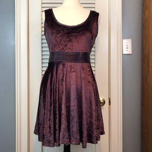 TULLE Purple Velvet Skater Dress Medium NWT